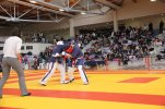 Yoseikan championnat france 2013 25