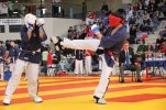 Yoseikan championnat france 2013 30