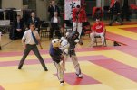 Yoseikan championnat france 2013 6